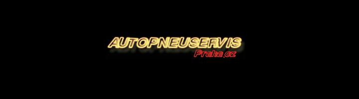 autopneuservis_logo